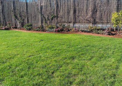 cesped-natural-cultiva-jardineria-en-donostia-29
