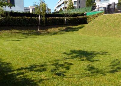 cesped-natural-cultiva-jardineria-en-donostia-46