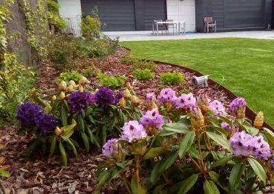 diseno-de-jardines-cultiva-jardineria-donostia-20