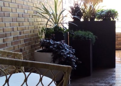 diseno-de-jardines-cultiva-jardineria-donostia-42