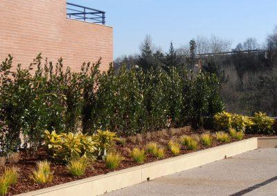 diseno-de-jardines-cultiva-jardineria-donostia-44