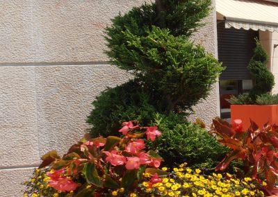 diseno-de-jardines-cultiva-jardineria-donostia-70