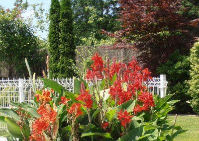 diseno-de-jardines-cultiva-jardineria-donostia-72