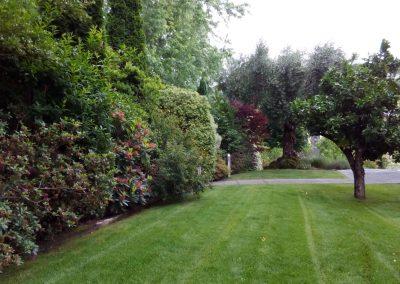 mantenimiento-de-jardines-cultiva-jardineria-en-donostia-14