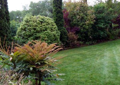 mantenimiento-de-jardines-cultiva-jardineria-en-donostia-28