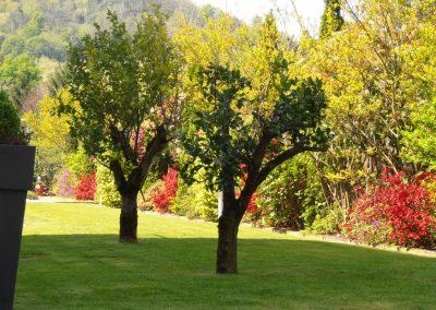 mantenimiento-de-jardines-cultiva-jardineria-en-donostia-29