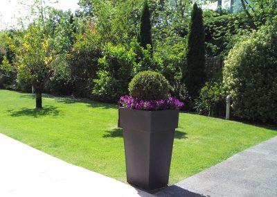 mantenimiento-de-jardines-cultiva-jardineria-en-donostia-31